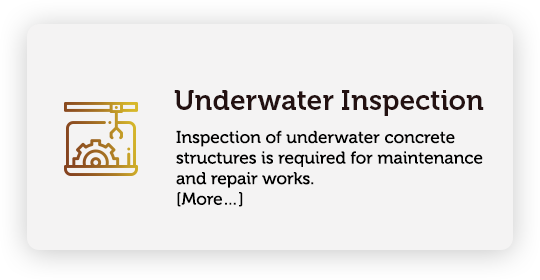 Inspection of underwater concrete structures is required for maintenance and repair works. Methods, types and objectives of underwater concrete structure inspection is discussed.